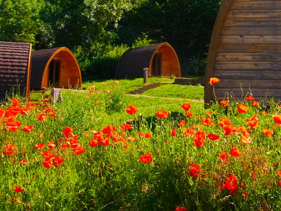 Glamping Pods hover